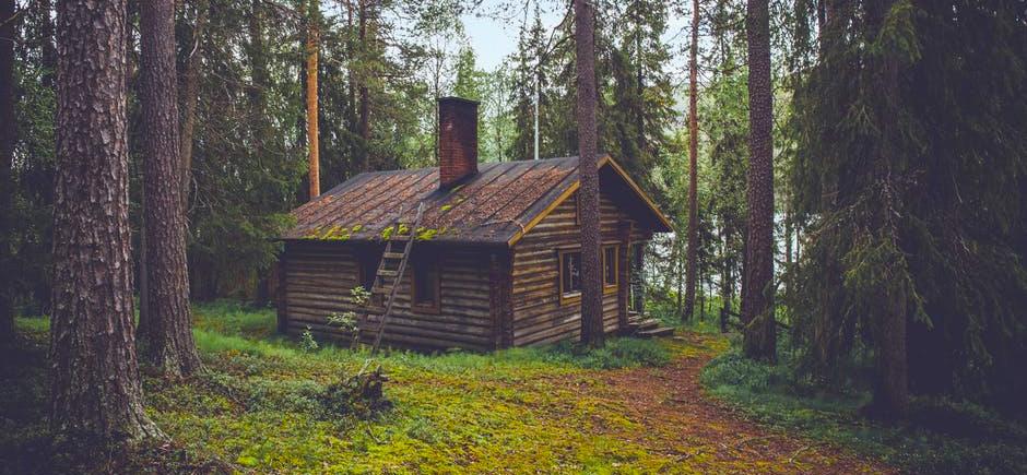 stuga i skogen